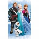Pekná detská osuška  - Frozen