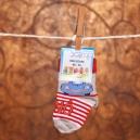 Detské ponožky Scamp / Autíčko